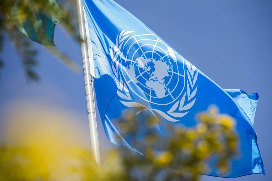 联合国报告:世界经济今年预计增长3%中国贡献三分之一
