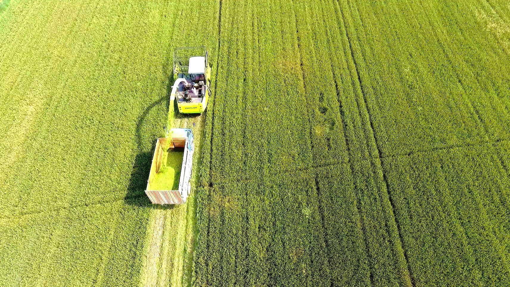 农机化司推进问题农机产品专项整治